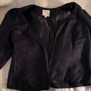 Black shimmery coat.